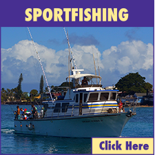 Maalaea Harbor Sportfishing